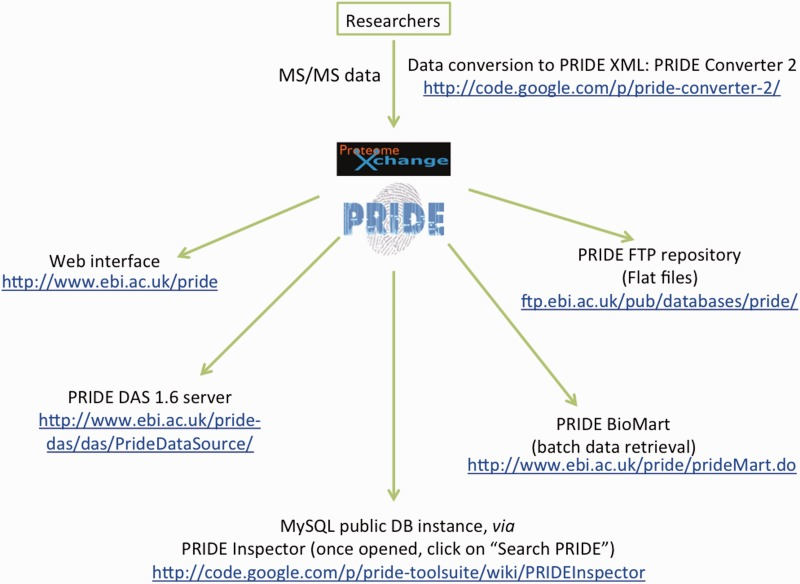 The PRoteomics IDEntifications (PRIDE) database and associated tools: status in 2013